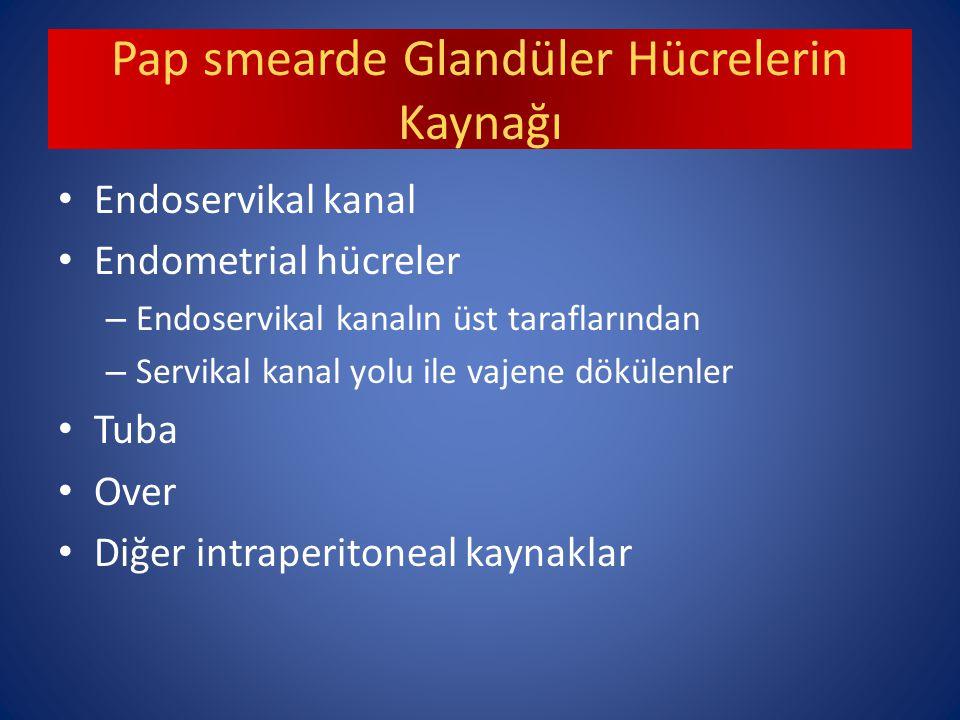 Pap smearde Glandüler Hücrelerin Kaynağı Endoservikal kanal Endometrial hücreler – Endoservikal kanalın üst taraflarından – Servikal kanal yolu ile vajene dökülenler Tuba Over Diğer intraperitoneal kaynaklar