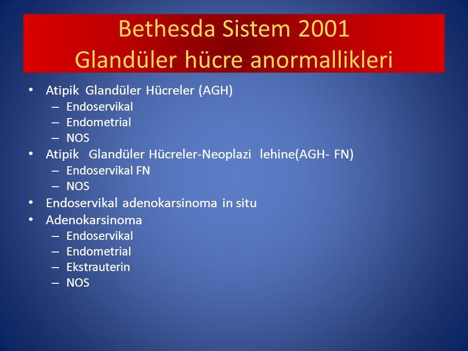 Bethesda Sistem 2001 Glandüler hücre anormallikleri Atipik Glandüler Hücreler (AGH) – Endoservikal – Endometrial – NOS Atipik Glandüler Hücreler-Neoplazi lehine(AGH- FN) – Endoservikal FN – NOS Endoservikal adenokarsinoma in situ Adenokarsinoma – Endoservikal – Endometrial – Ekstrauterin – NOS