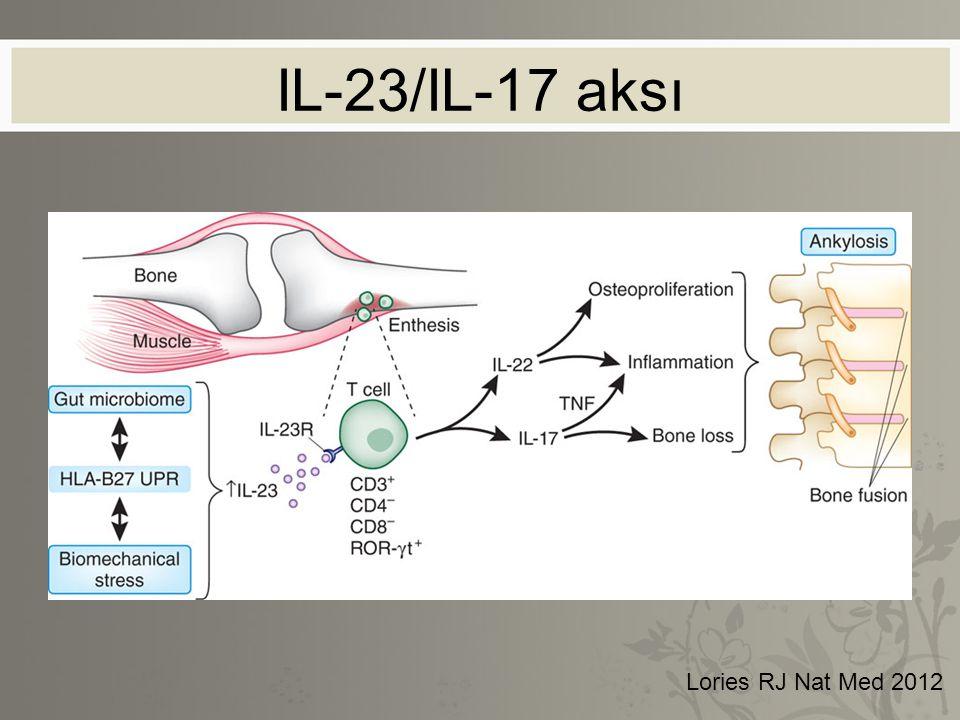 IL-23/IL-17 aksı Lories RJ Nat Med 2012