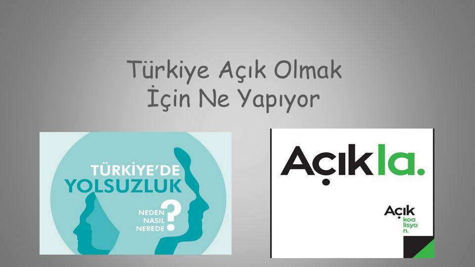 Türkiye Açık Olmak İçin Ne Yapıyor