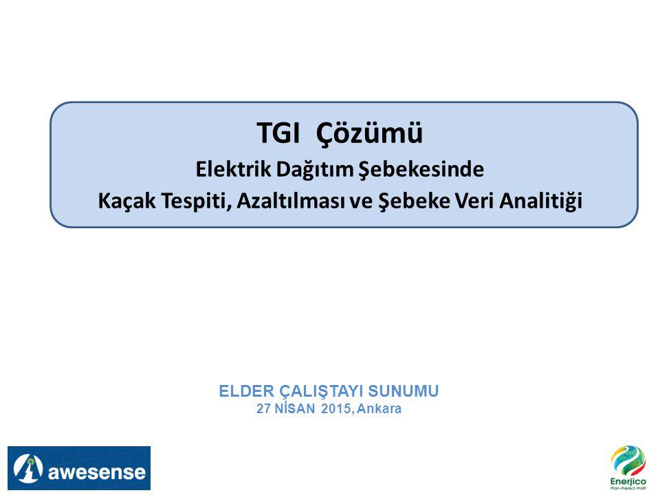 TGI Çözümü Elektrik Dağıtım Şebekesinde Kaçak Tespiti, Azaltılması ve Şebeke Veri Analitiği ELDER ÇALIŞTAYI SUNUMU 27 NİSAN 2015, Ankara