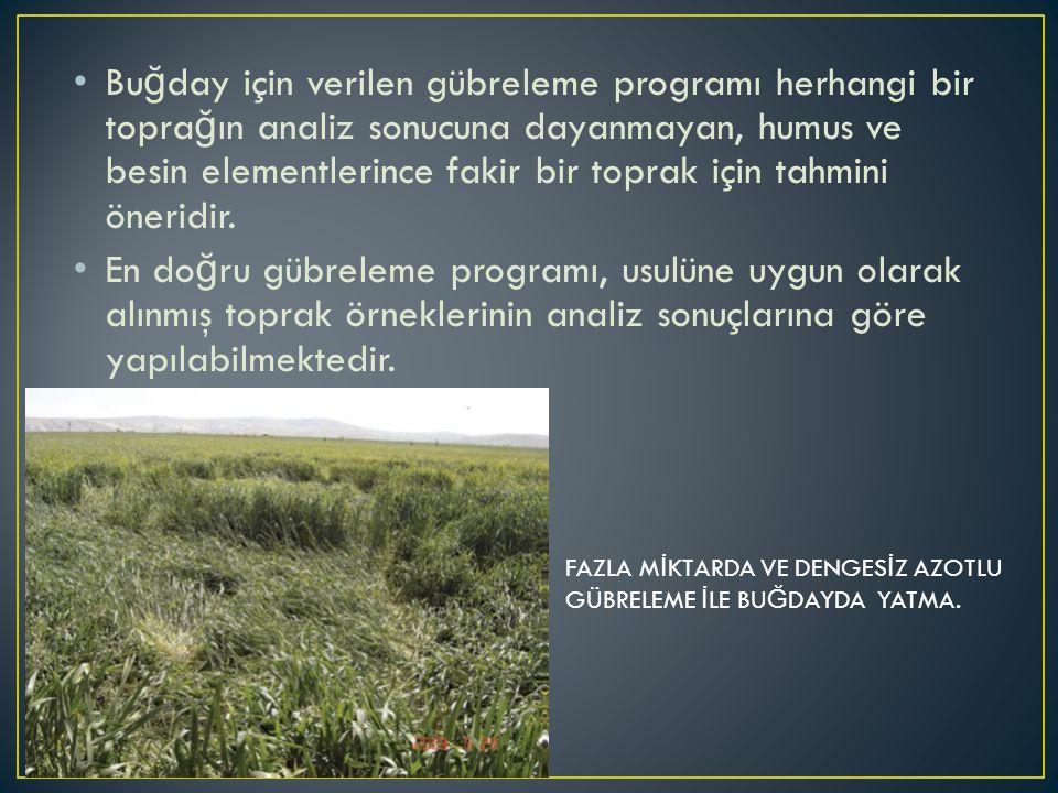 Bu ğ day için verilen gübreleme programı herhangi bir topra ğ ın analiz sonucuna dayanmayan, humus ve besin elementlerince fakir bir toprak için tahmi