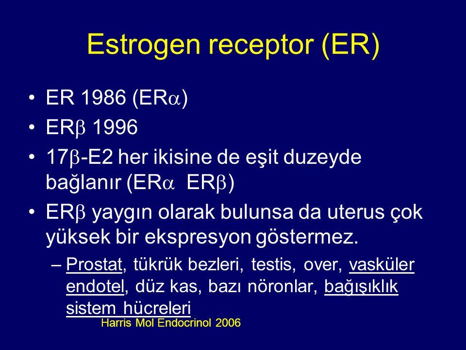 Estrogen receptor (ER) ER 1986 (ER  ) ER  1996 17  -E2 her ikisine de eşit duzeyde bağlanır (ER  ER  ) ER  yaygın olarak bulunsa da uterus çok y