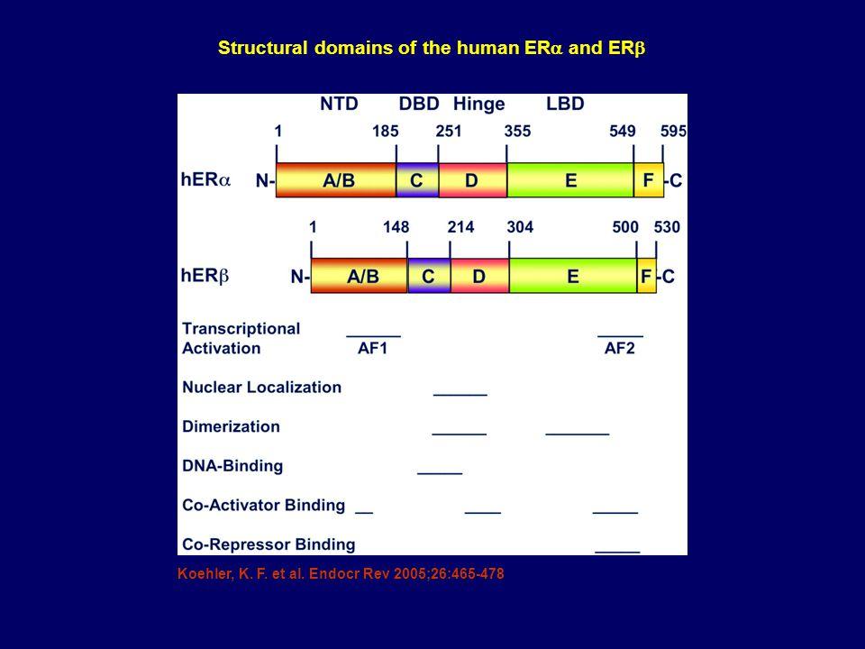 Koehler, K. F. et al. Endocr Rev 2005;26:465-478 Structural domains of the human ER  and ER 