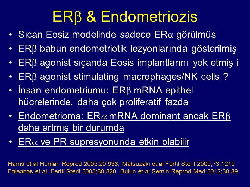 ER  & Endometriozis Sıçan Eosiz modelinde sadece ER  görülmüş ER  babun endometriotik lezyonlarında gösterilmiş ER  agonist sıçanda Eosis implantl
