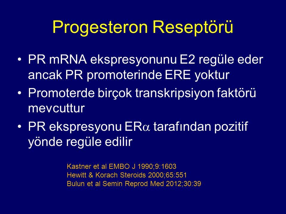 Progesteron Reseptörü PR mRNA ekspresyonunu E2 regüle eder ancak PR promoterinde ERE yoktur Promoterde birçok transkripsiyon faktörü mevcuttur PR eksp