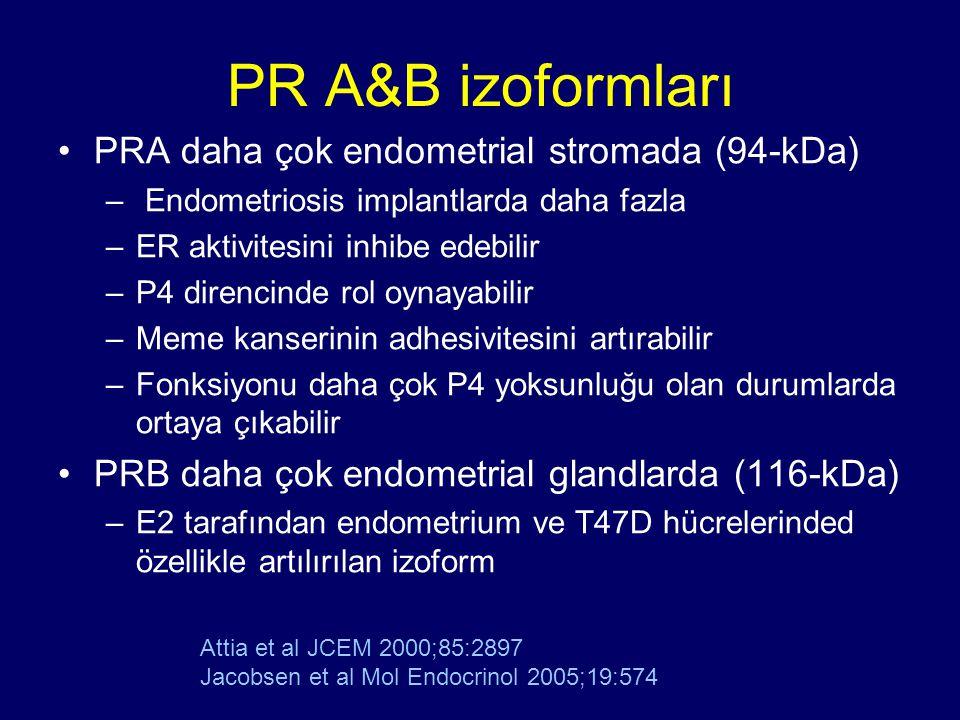 PR A&B izoformları PRA daha çok endometrial stromada (94-kDa) – Endometriosis implantlarda daha fazla –ER aktivitesini inhibe edebilir –P4 direncinde