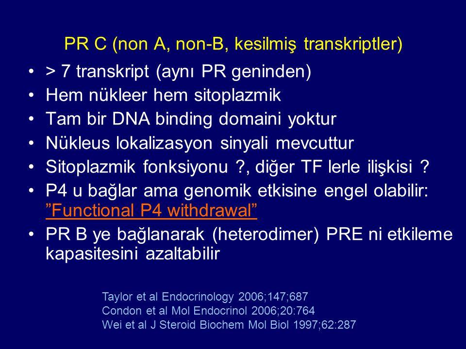 PR C (non A, non-B, kesilmiş transkriptler) > 7 transkript (aynı PR geninden) Hem nükleer hem sitoplazmik Tam bir DNA binding domaini yoktur Nükleus l