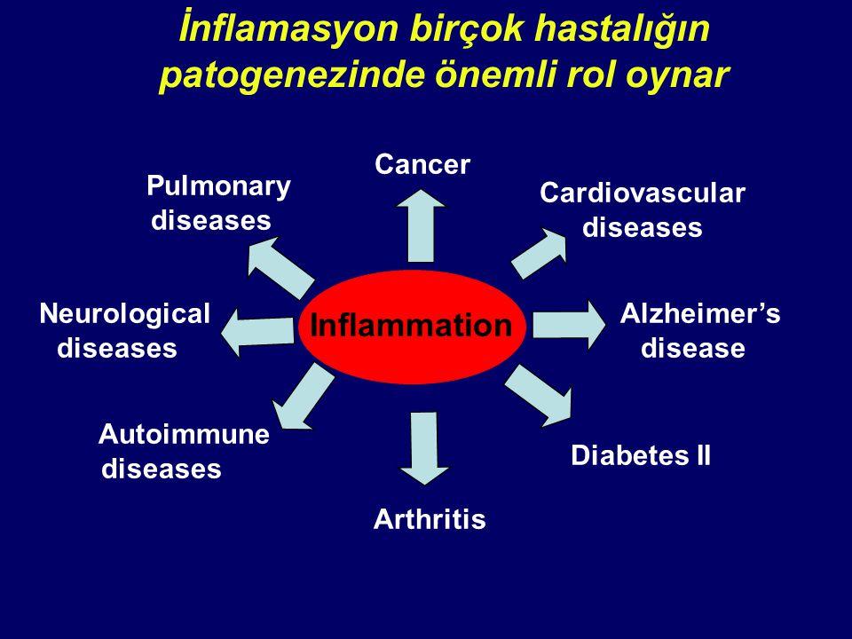 İnflamasyon birçok hastalığın patogenezinde önemli rol oynar Inflammation Diabetes II Pulmonary diseases Cancer Cardiovascular diseases Alzheimer's di