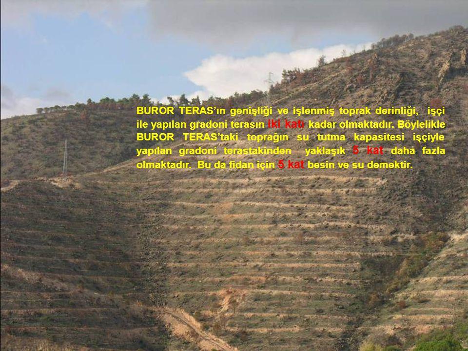 BUROR TERAS'ın genişliği ve işlenmiş toprak derinliği, işçi ile yapılan gradoni terasın iki katı kadar olmaktadır. Böylelikle BUROR TERAS'taki toprağı