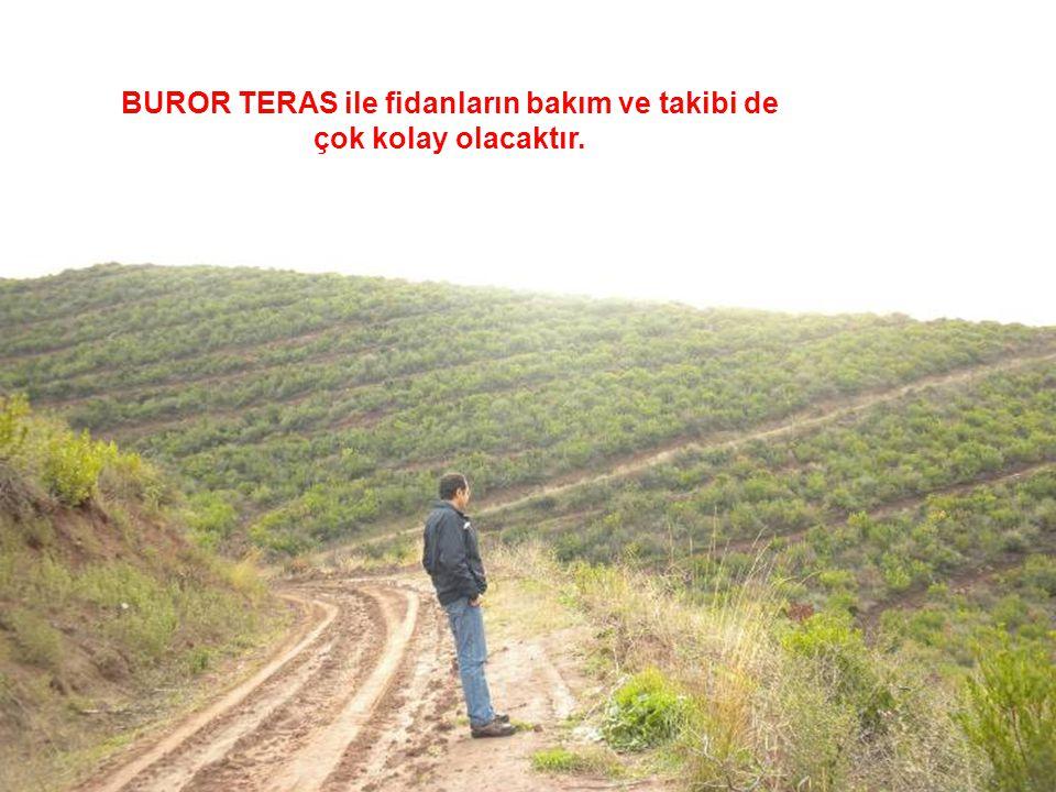 BUROR TERAS ile fidanların bakım ve takibi de çok kolay olacaktır.