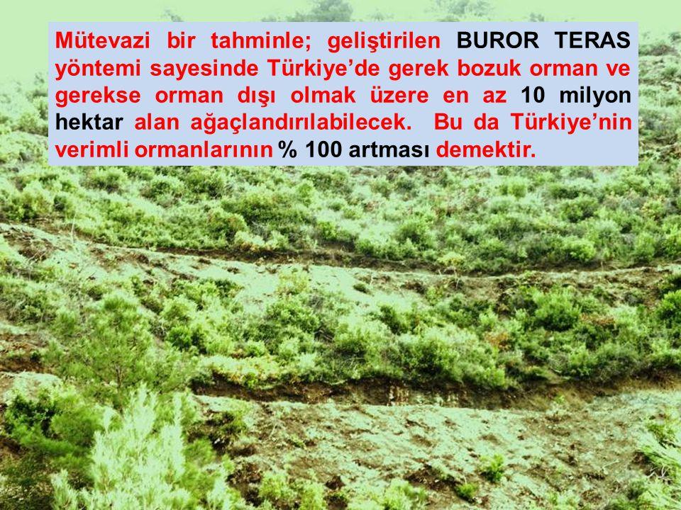 Mütevazi bir tahminle; geliştirilen BUROR TERAS yöntemi sayesinde Türkiye'de gerek bozuk orman ve gerekse orman dışı olmak üzere en az 10 milyon hekta
