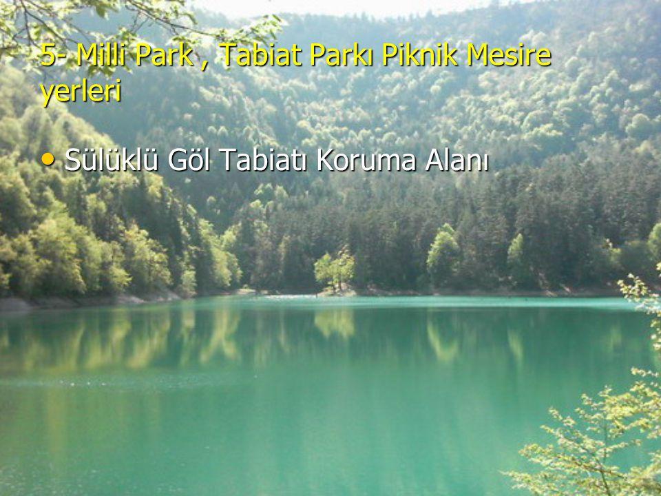5- Milli Park, Tabiat Parkı Piknik Mesire yerleri Sülüklü Göl Tabiatı Koruma Alanı Sülüklü Göl Tabiatı Koruma Alanı