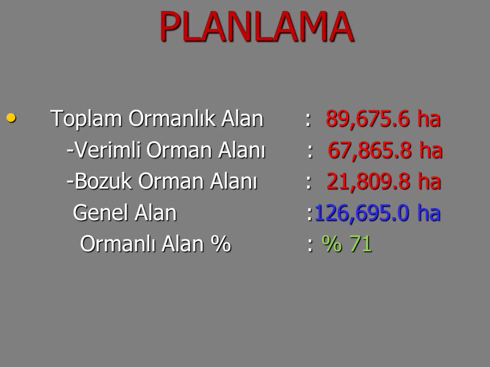 PLANLAMA PLANLAMA Toplam Ormanlık Alan : 89,675.6 ha Toplam Ormanlık Alan : 89,675.6 ha -Verimli Orman Alanı : 67,865.8 ha -Verimli Orman Alanı : 67,8