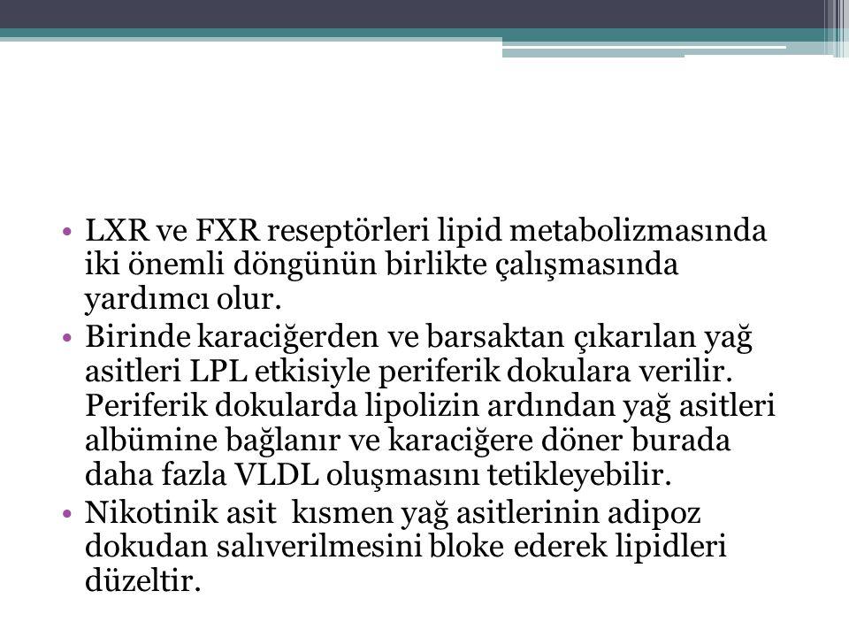 LXR ve FXR reseptörleri lipid metabolizmasında iki önemli döngünün birlikte çalışmasında yardımcı olur. Birinde karaciğerden ve barsaktan çıkarılan ya