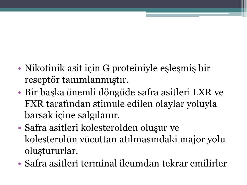 Nikotinik asit için G proteiniyle eşleşmiş bir reseptör tanımlanmıştır. Bir başka önemli döngüde safra asitleri LXR ve FXR tarafından stimule edilen o