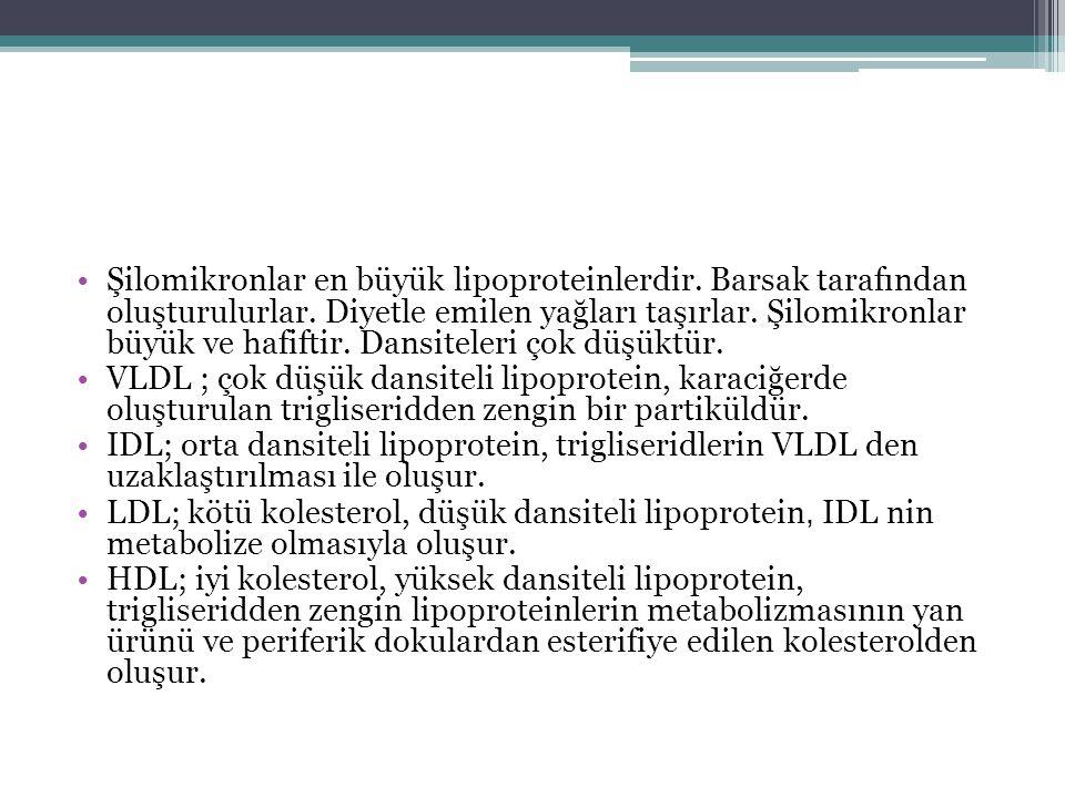 Şilomikronlar en büyük lipoproteinlerdir. Barsak tarafından oluşturulurlar. Diyetle emilen yağları taşırlar. Şilomikronlar büyük ve hafiftir. Dansitel