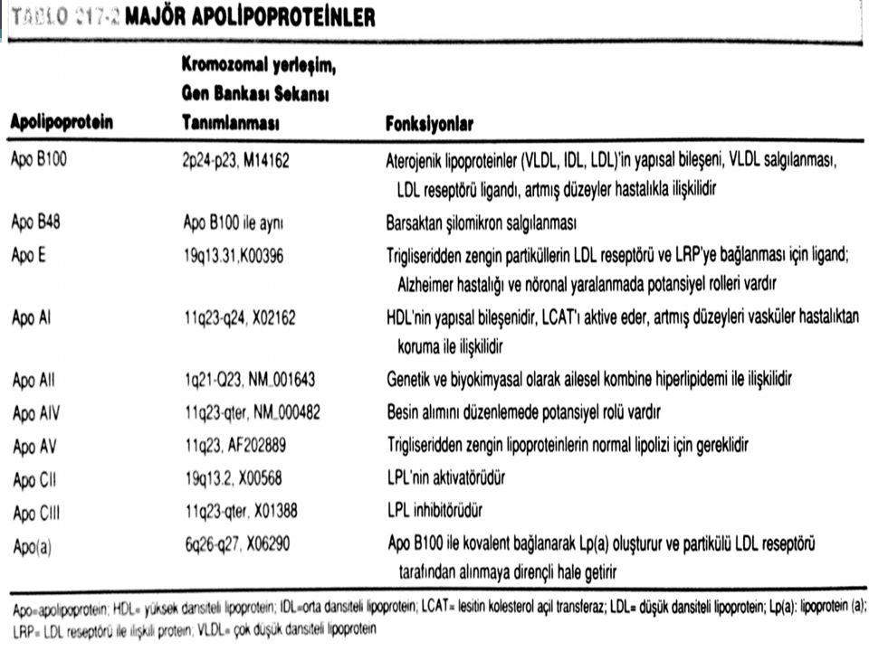 Apo proteinler ve Fonksiyonları Apo Al : HDL yapısal proteini ve reseptör ligandı, LCAT* aktivatörü Apo All : HDL için yapısal protein, hepatik lipaz aktivatörü Apo AlV : Lipoprotein lipaz (LPL) ve LCAT* aktivatörü Apo B100 : VLDL, LDL için yapısal protein, LDL reseptör ligandı Apo B48 : B100'ün %48'ini içerir, şilomikron toplanması ve salınması için gerekli Apo Cl : LCAT (*Lesitin Kolesterol Asiltransferaz) aktivatörü Apo Cll : LPL için esansiyel kofaktör Apo Clll : LPL ve hepatik lipaz vasıtasıyla TG hidrolizini önler Apo D : KETP (Kolesteril Ester Transfer Proteini ) için kofaktör Apo E : Hepatik şilomikron ve VLDL reseptörü için ligand, LDL için ligand