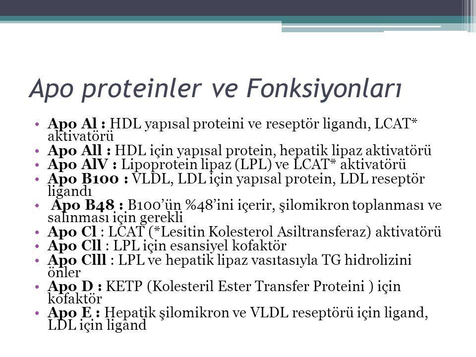 Apo proteinler ve Fonksiyonları Apo Al : HDL yapısal proteini ve reseptör ligandı, LCAT* aktivatörü Apo All : HDL için yapısal protein, hepatik lipaz