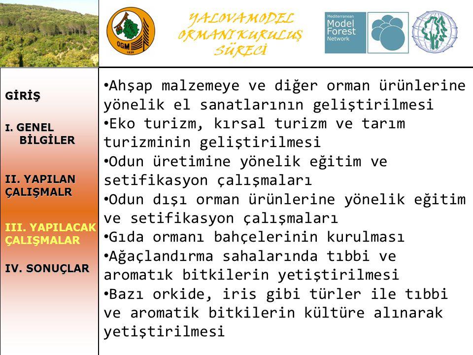 YALOVA MODEL ORMANI KURULU Ş SÜREC İ GİRİŞ I. GENEL I.