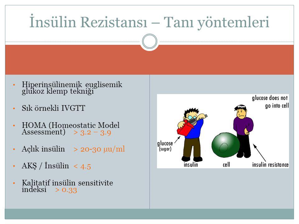 Hiperinsülinemik euglisemik glukoz klemp tekniği Sık örnekli IVGTT HOMA (Homeostatic Model Assessment) > 3.2 – 3.9 Açlık insülin > 20-30 µu/ml AKŞ / İ