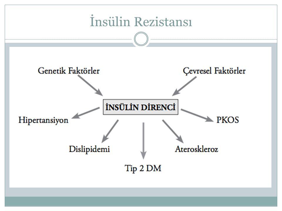 Hepatik glukoz yapımı Lipoliz İskelet kası ve yağ hücrelerine glukoz alımı Kompansatuar insülinemi Normal glukoz metabolizması