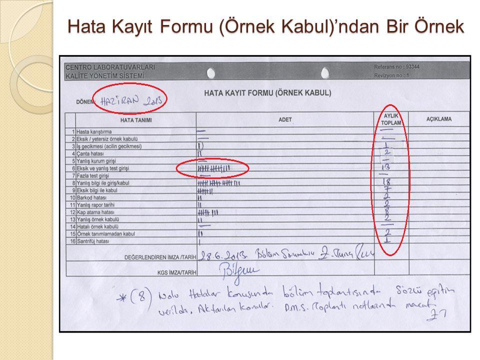 Hata Kayıt Formu (Örnek Kabul)'ndan Bir Örnek