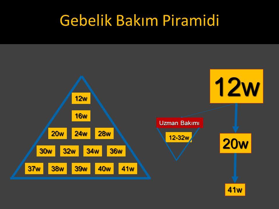 12w 24w28w20w 16w 30w32w36w34w 37w38w39w40w41w 12w 20w 41w Uzman Bakımı 12-32w Gebelik Bakım Piramidi