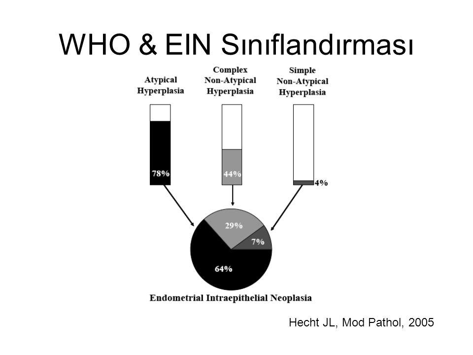 WHO & EIN Sınıflandırması Hecht JL, Mod Pathol, 2005