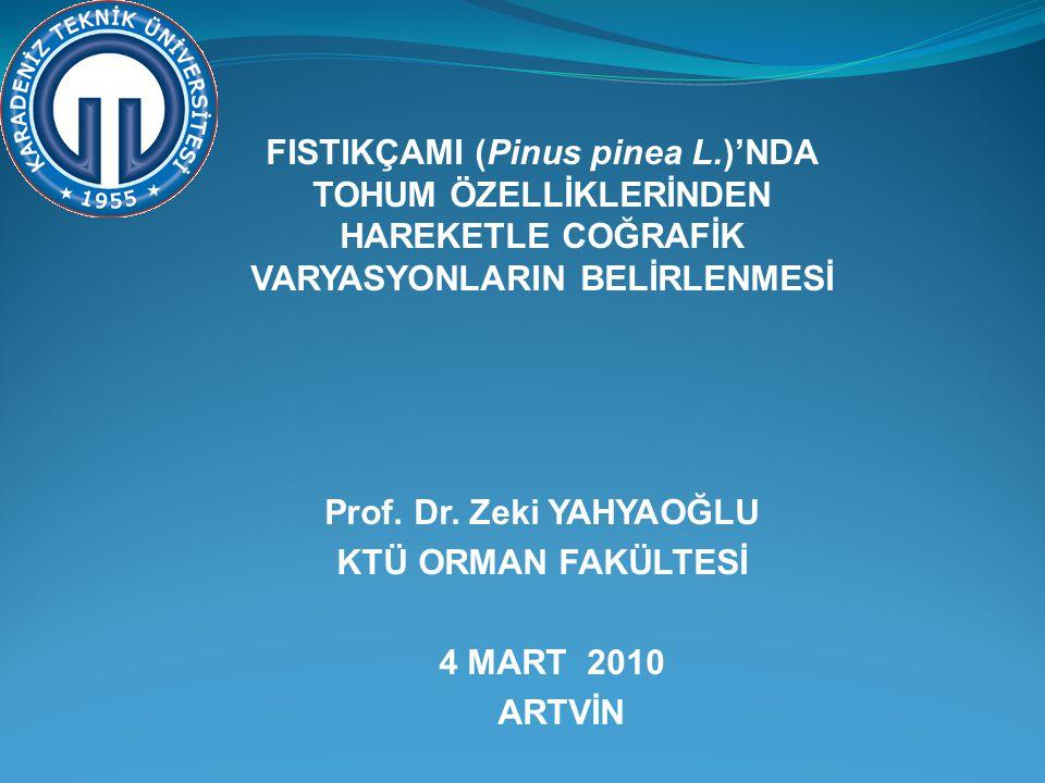 FISTIKÇAMI (Pinus pinea L.)'NDA TOHUM ÖZELLİKLERİNDEN HAREKETLE COĞRAFİK VARYASYONLARIN BELİRLENMESİ Prof. Dr. Zeki YAHYAOĞLU KTÜ ORMAN FAKÜLTESİ 4 MA
