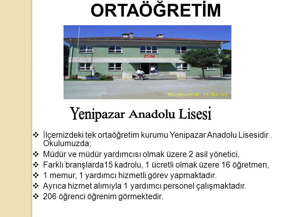 ORTAÖĞRETİM  İlçemizdeki tek ortaöğretim kurumu Yenipazar Anadolu Lisesidir.