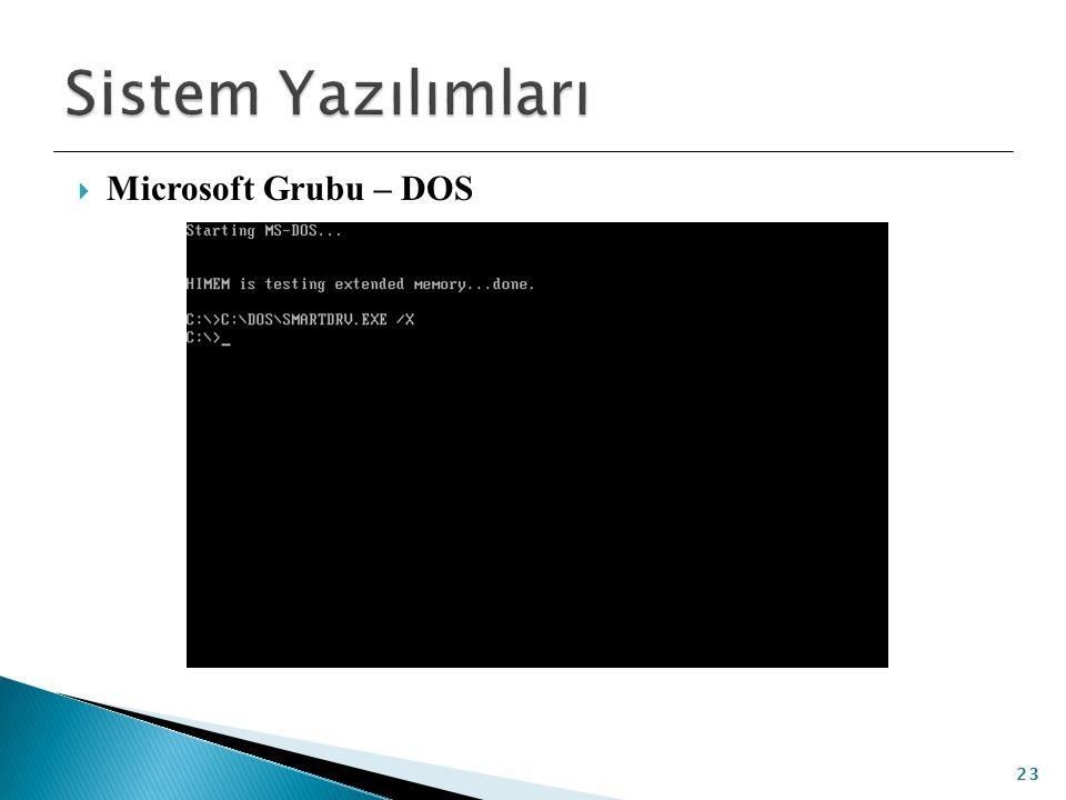  Microsoft Grubu – DOS 23