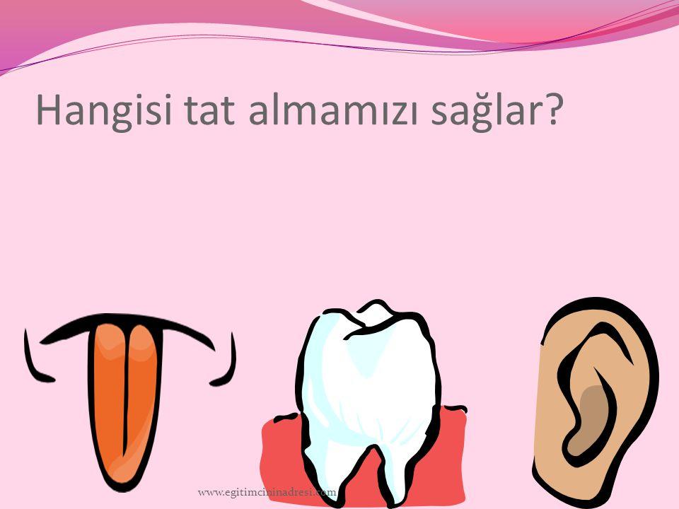 Hangisi tat almamızı sağlar? www.egitimcininadresi.com