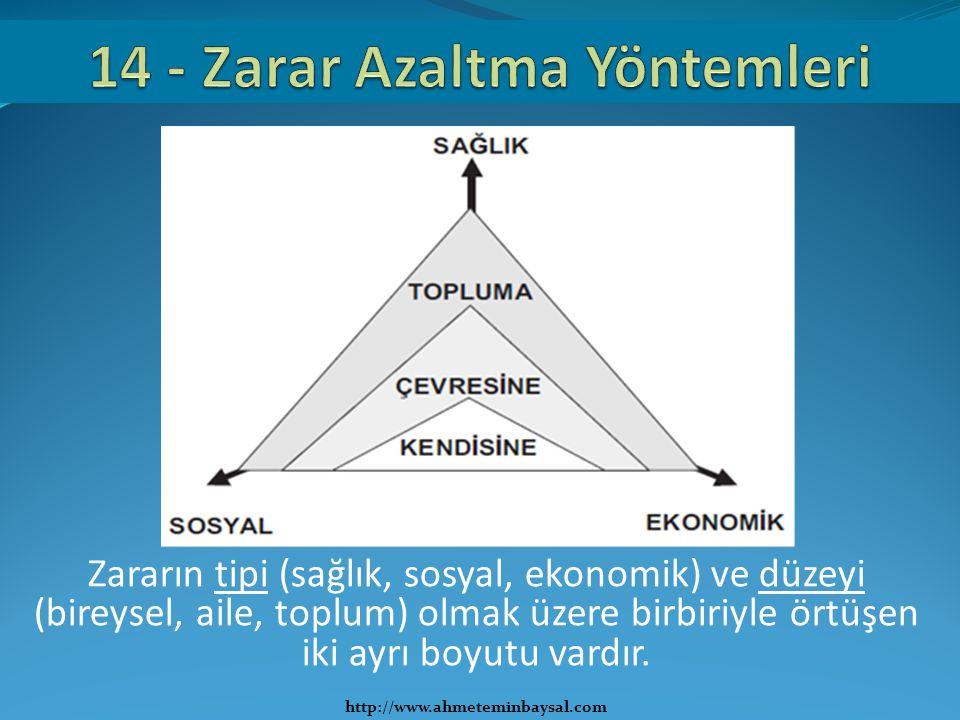 Zararın tipi (sağlık, sosyal, ekonomik) ve düzeyi (bireysel, aile, toplum) olmak üzere birbiriyle örtüşen iki ayrı boyutu vardır. http://www.ahmetemin
