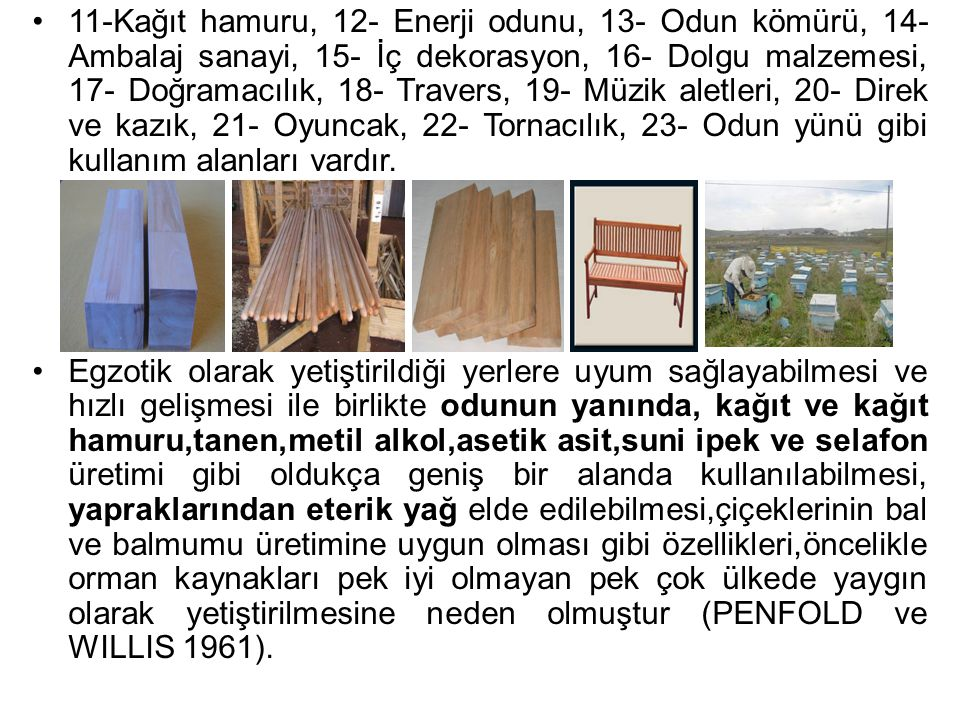 11-Kağıt hamuru, 12- Enerji odunu, 13- Odun kömürü, 14- Ambalaj sanayi, 15- İç dekorasyon, 16- Dolgu malzemesi, 17- Doğramacılık, 18- Travers, 19- Müz