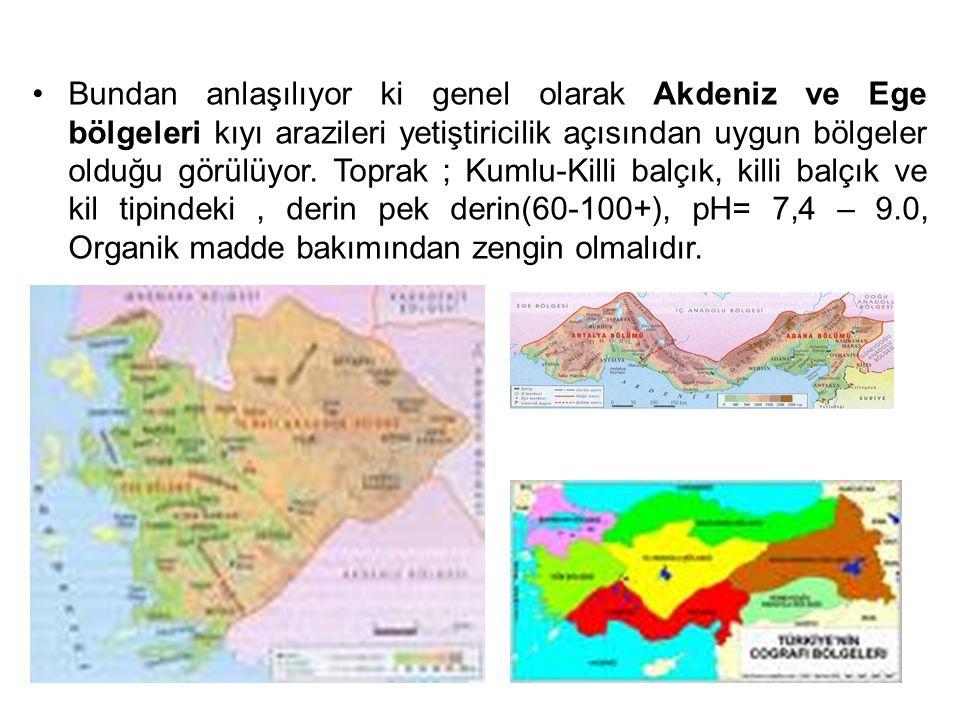 Bundan anlaşılıyor ki genel olarak Akdeniz ve Ege bölgeleri kıyı arazileri yetiştiricilik açısından uygun bölgeler olduğu görülüyor. Toprak ; Kumlu-Ki