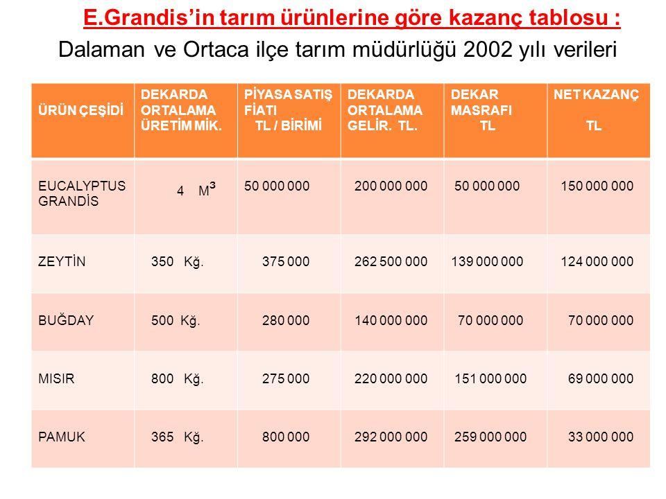 E.Grandis'in tarım ürünlerine göre kazanç tablosu : Dalaman ve Ortaca ilçe tarım müdürlüğü 2002 yılı verileri ÜRÜN ÇEŞİDİ DEKARDA ORTALAMA ÜRETİM MİK.