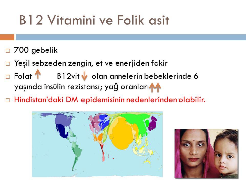 B12 Vitamini ve Folik asit  700 gebelik  Yeşil sebzeden zengin, et ve enerjiden fakir  Folat B12vit olan annelerin bebeklerinde 6 yaşında insülin r