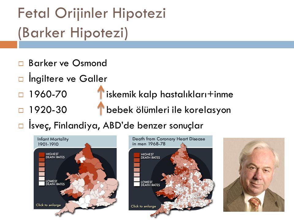 Fetal Orijinler Hipotezi (Barker Hipotezi)  Barker ve Osmond  İ ngiltere ve Galler  1960-70 iskemik kalp hastalıkları+inme  1920-30 bebek ölümleri
