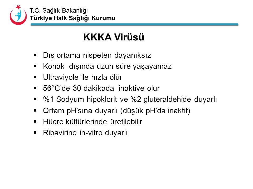 T.C. Sağlık Bakanlığı Türkiye Halk Sağlığı Kurumu T.C. Sağlık Bakanlığı Türkiye Halk Sağlığı Kurumu KKKA Virüsü  Dış ortama nispeten dayanıksız  Kon