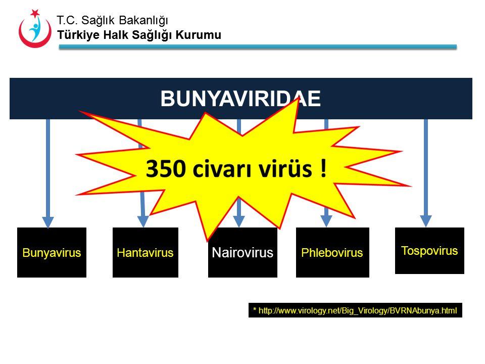 T.C. Sağlık Bakanlığı Türkiye Halk Sağlığı Kurumu T.C. Sağlık Bakanlığı Türkiye Halk Sağlığı Kurumu BunyavirusHantavirus Nairovirus Phlebovirus Tospov