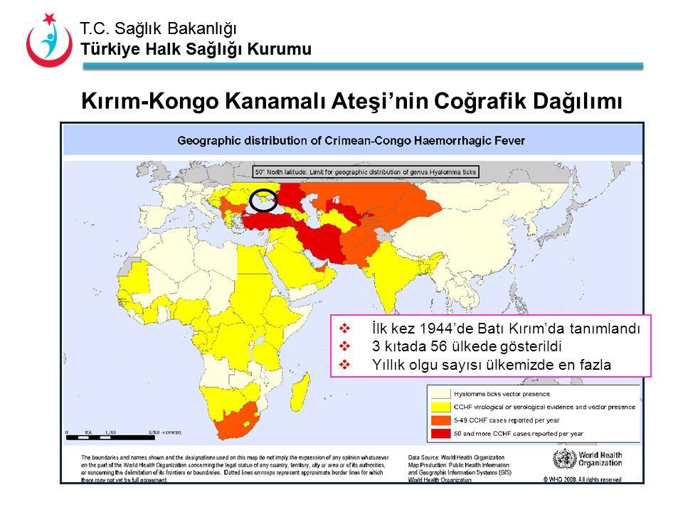 T.C. Sağlık Bakanlığı Türkiye Halk Sağlığı Kurumu T.C. Sağlık Bakanlığı Türkiye Halk Sağlığı Kurumu  İlk kez 1944'de Batı Kırım'da tanımlandı  3 kıt