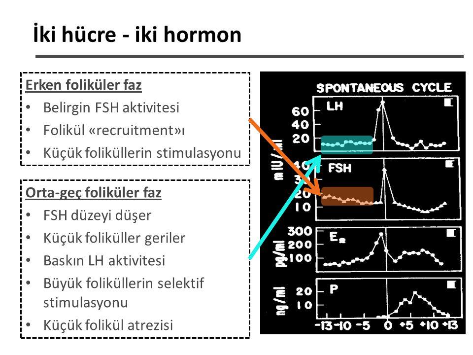 KOH için LH/hCG Temel dayanaklar LH reseptörleri 10-12 mm foliküllerde oluşur LH, FSH'ın granuloza hücrelerindeki tüm fizyolojik fonksiyonlarını gerçekleştirebilir Oositler ve farklı evredeki preimplantasyon embriyoları LH-r eksprese eder LH, intraoveryan androjenleri arttırır, FSH'a yanıt veren granuloza hücre fonksiyonlarını indükler LH, FSH ile sinerjistik olarak folikül gelişimini indükler