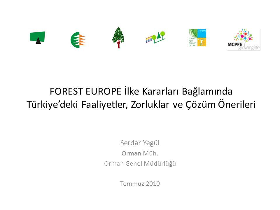 FOREST EUROPE İlke Kararları Bağlamında Türkiye'deki Faaliyetler, Zorluklar ve Çözüm Önerileri Serdar Yegül Orman Müh. Orman Genel Müdürlüğü Temmuz 20