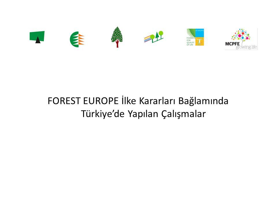 FOREST EUROPE İlke Kararları Bağlamında Türkiye'de Yapılan Çalışmalar