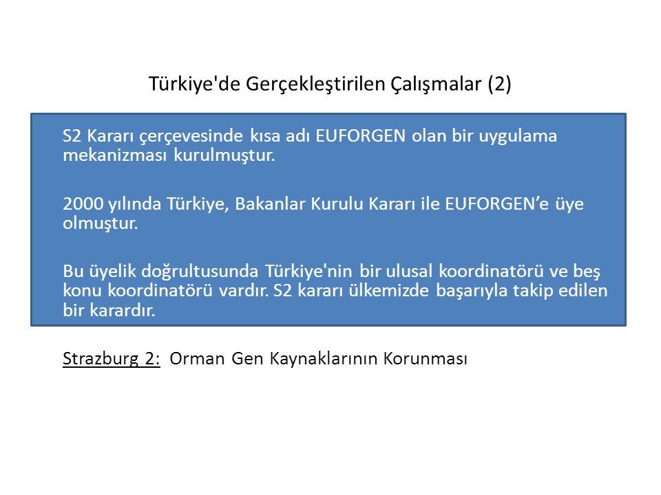 Türkiye'de Gerçekleştirilen Çalışmalar (2) S2 Kararı çerçevesinde kısa adı EUFORGEN olan bir uygulama mekanizması kurulmuştur. 2000 yılında Türkiye, B