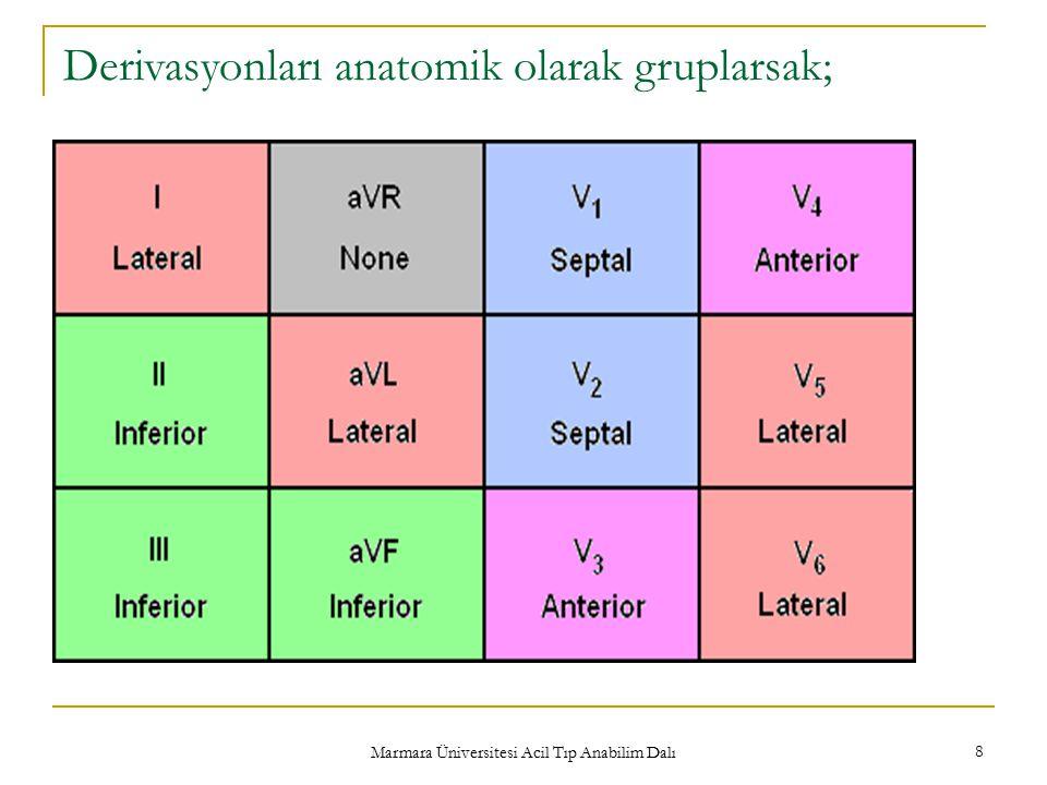 Marmara Üniversitesi Acil Tıp Anabilim Dalı 8 Derivasyonları anatomik olarak gruplarsak;