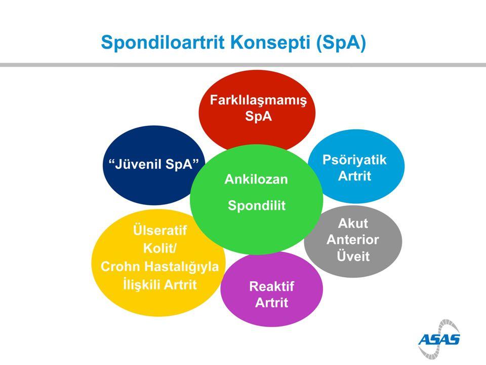 Spondiloartrit Konsepti Spondilartropatiler (SpA) Alt grup Ankilozan spondilit Psoriatik artrit Reaktif artrit IBH ilişkili artrit Andiferansiye SpA Aksiyal tutulum Periferik eklem tutulumu Entesopati Ekstra-artikuler bulgular Klinik Tablo HLA-B27 pozitifliği