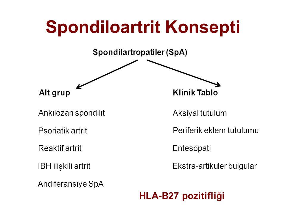 AksSpa terimi AS teriminin yerini alabilir mi .