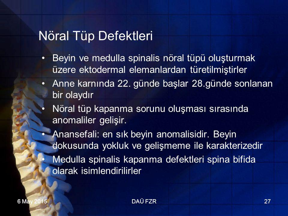 6 May 2015DAÜ FZR27 Nöral Tüp Defektleri Beyin ve medulla spinalis nöral tüpü oluşturmak üzere ektodermal elemanlardan türetilmiştirler Anne karnında 22.